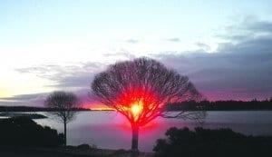 Auringonnousu Vuosaaressa.