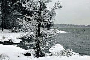 Nuottaniemessä on lunta, mutta meri ei ole vielä jäätynyt.