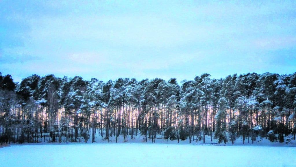 Kallahdenniemi talvella.