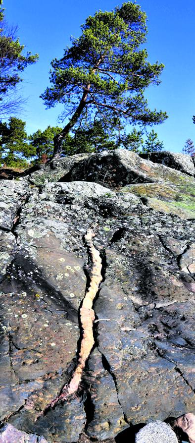 Nuottasaaren kallio.
