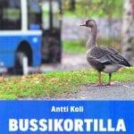 Antti Koli kertoo, miten läheltä luonto löytyy