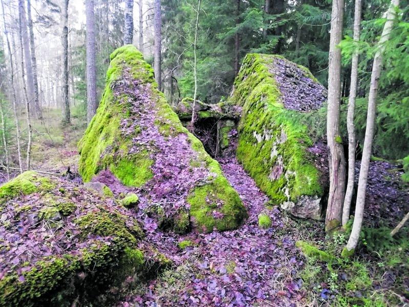 Merkillinen kivi Ruusuniemessä. Kuva: Risto Larjavaara