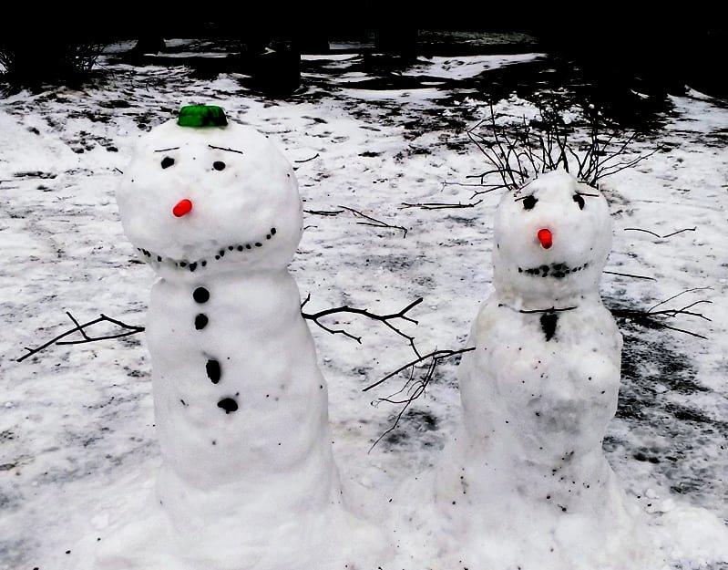 Ihanaa kun saatiin viime lauantaina 8.2. vuoden 2020 ensimmäiset kunnon lumet! Päivän parasta antia olivat lasten omin käsin pyöräytetty lumiukko Peeter ja hänen rouvansa Pauliina! T. Toivokainen I.