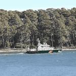 Meloja pelastettiin merestä