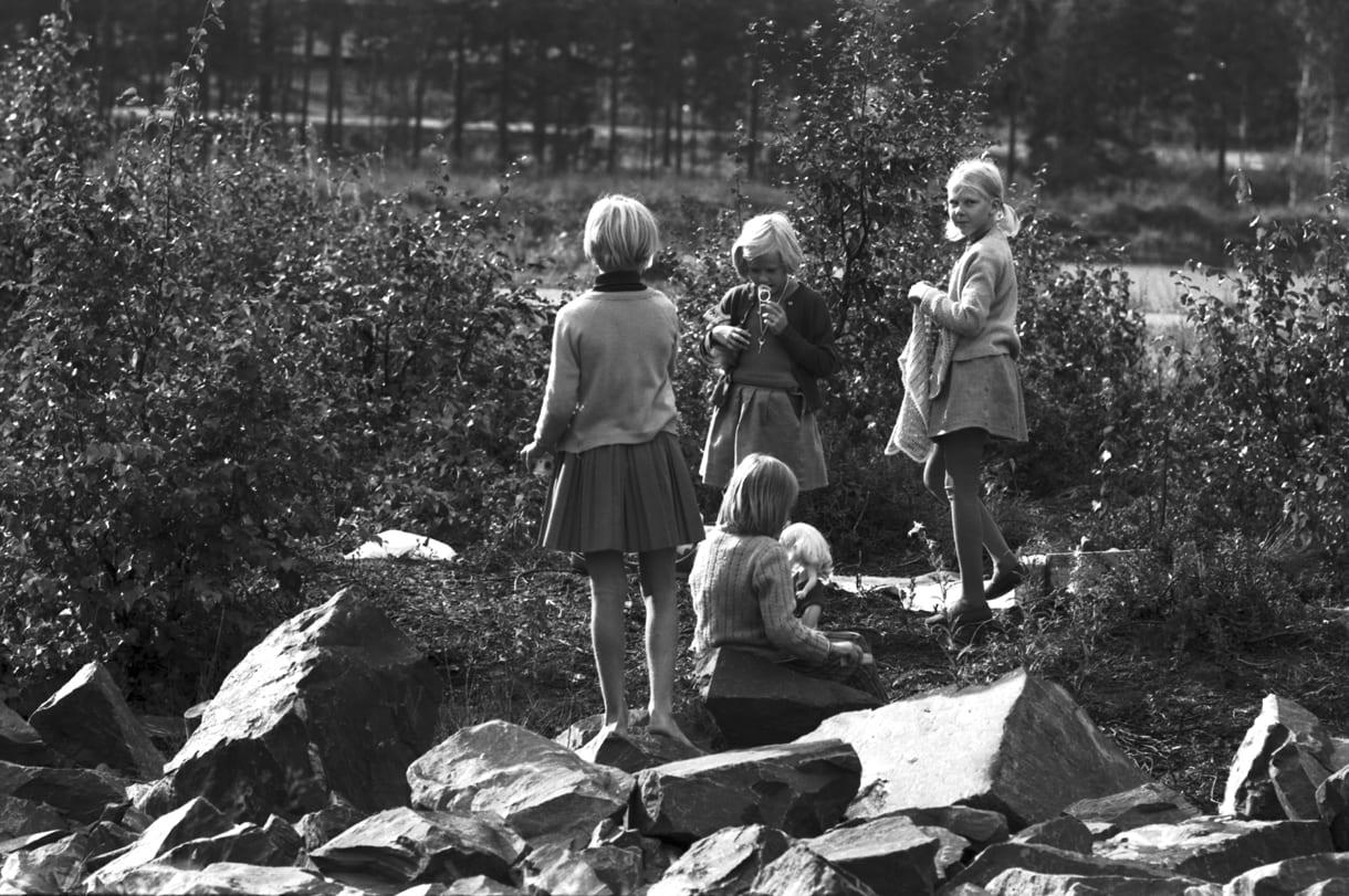 Kuva Pohjoisen ostoskeskuksen viereisellä Kangaslammella leikkivistä tytöistä syyskuussa 1970. Takana näkyy Kallvikintie.                                                                    Kuva: Eeva Rista, Helsingin kaupunginmuseo