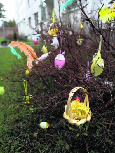 Merikorttikujalla oli pensas koristeltu pääsiäisen kunniaksi.