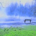 Porslahden puistossa