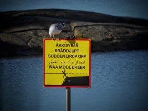 Kuvassa on uusi varoituskyltti äkkisyvästä Aurinkolahden rannalla. Teksti on kirjoitettu suomeksi, ruotsiksi, englanniksi, arabiaksi ja somaliksi. Uusia varoituskylttejä on tuotu kesällä 2020 Aurinkolahden, Kallahdenniemen, Tuoriniemen, Hietaniemen, Pikkukosken, Pakilan, Pukinmäen ja Tapaninvainion uimarannoille. Kylteissä varoitetaan esimerkiksi äkkisyväpaikoista ja virtauksista. Kuva: Aage