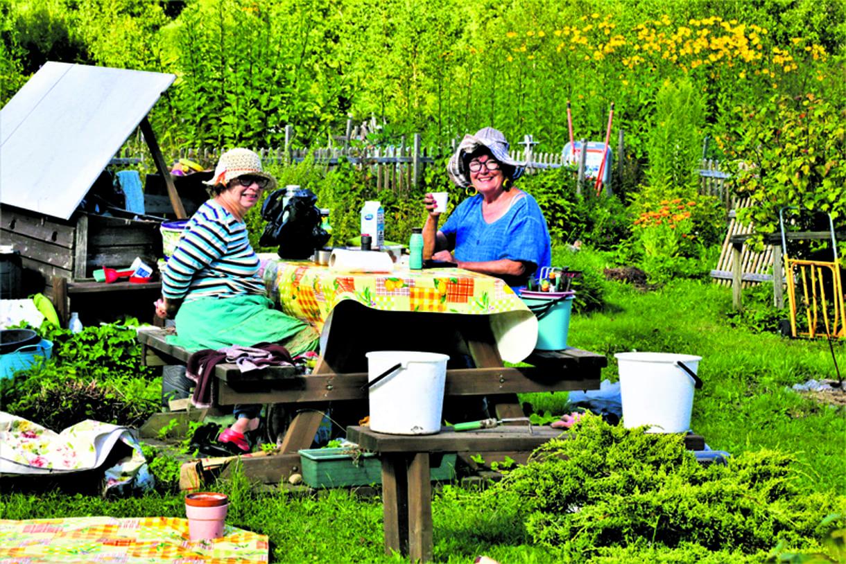 Kesän satoa korjattu auringon lämmössä. Hommien välillä pidettiin iloinen kahvitauko. Kuva: Matti Koivisto