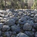 Lautakunta päätti säästää Rastilanrannan metsän rakentamiselta ja kehittää leirintäaluetta