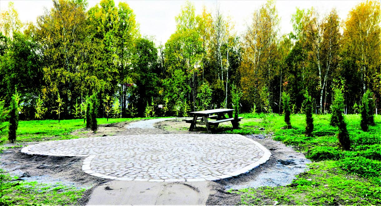 Rakkaudenmetsä sai 280 puuta ja viime viikolla kivisen sydämen. Kuva: Matti Koivisto
