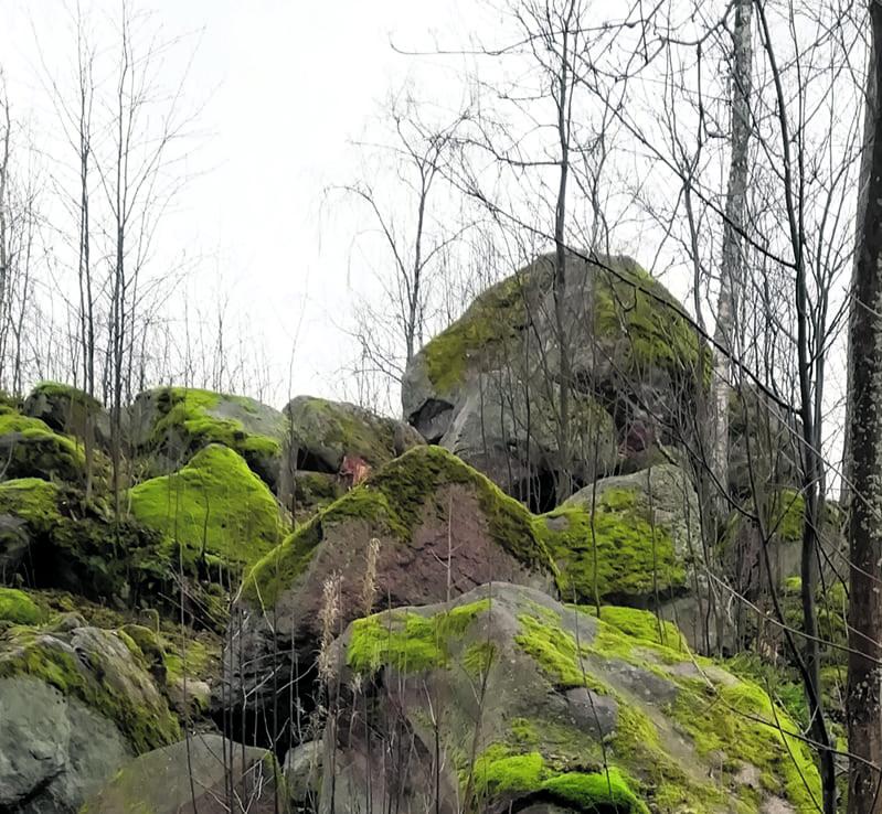 Se löytyy Rastilan leirintäalueen takaa. Kuusiaita-kuja johtaa kyseiselle kukkulalle (kuva oikealla).              Terveisin Risto Larjavaara
