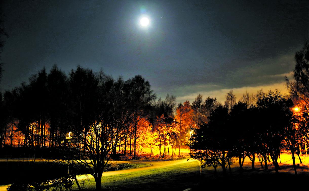 Syksy pitkällä, lämmin yö ja täysikuun valo. Oltaisiinko jo etelässä?       Kuva: Matti Koivisto