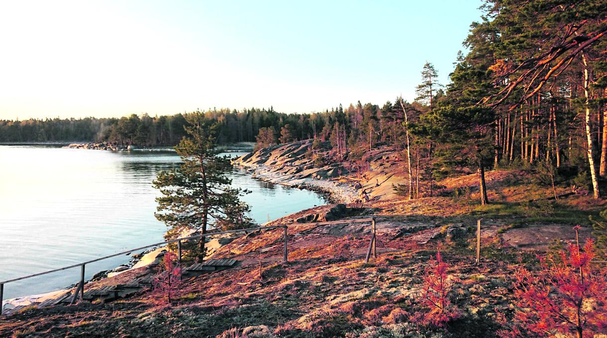 Nuottasaaren ranta. Nuottasaari sijaitsee Uutelan ulkoilualueen edustalla. Kuva: Helsingin kaupunki