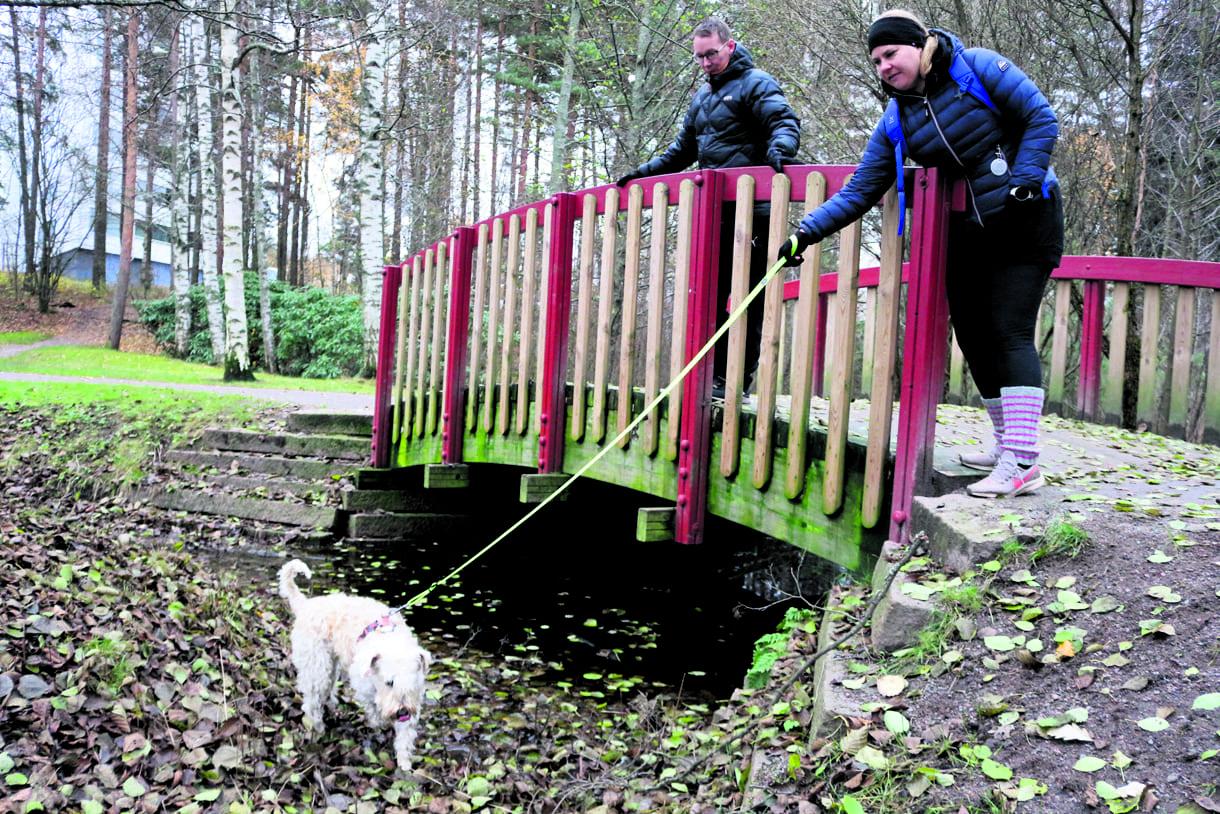 Hanna Vehviläinen pitää Nessaa talutushihnassa paikassa, jossa mieshenkilö joutui pulaan. Juha-Pekka Pantsu seuraa taustalla.