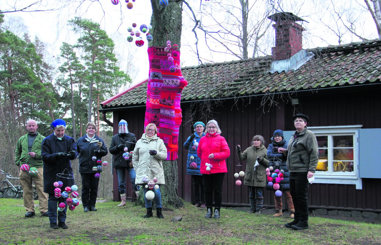 Joulukoivun koristajia Sjökullan pihalla.                                                                                    Kuvat: Outi Lepola