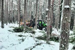 Traktori lastaamassa puita Uutelan metsässä.
