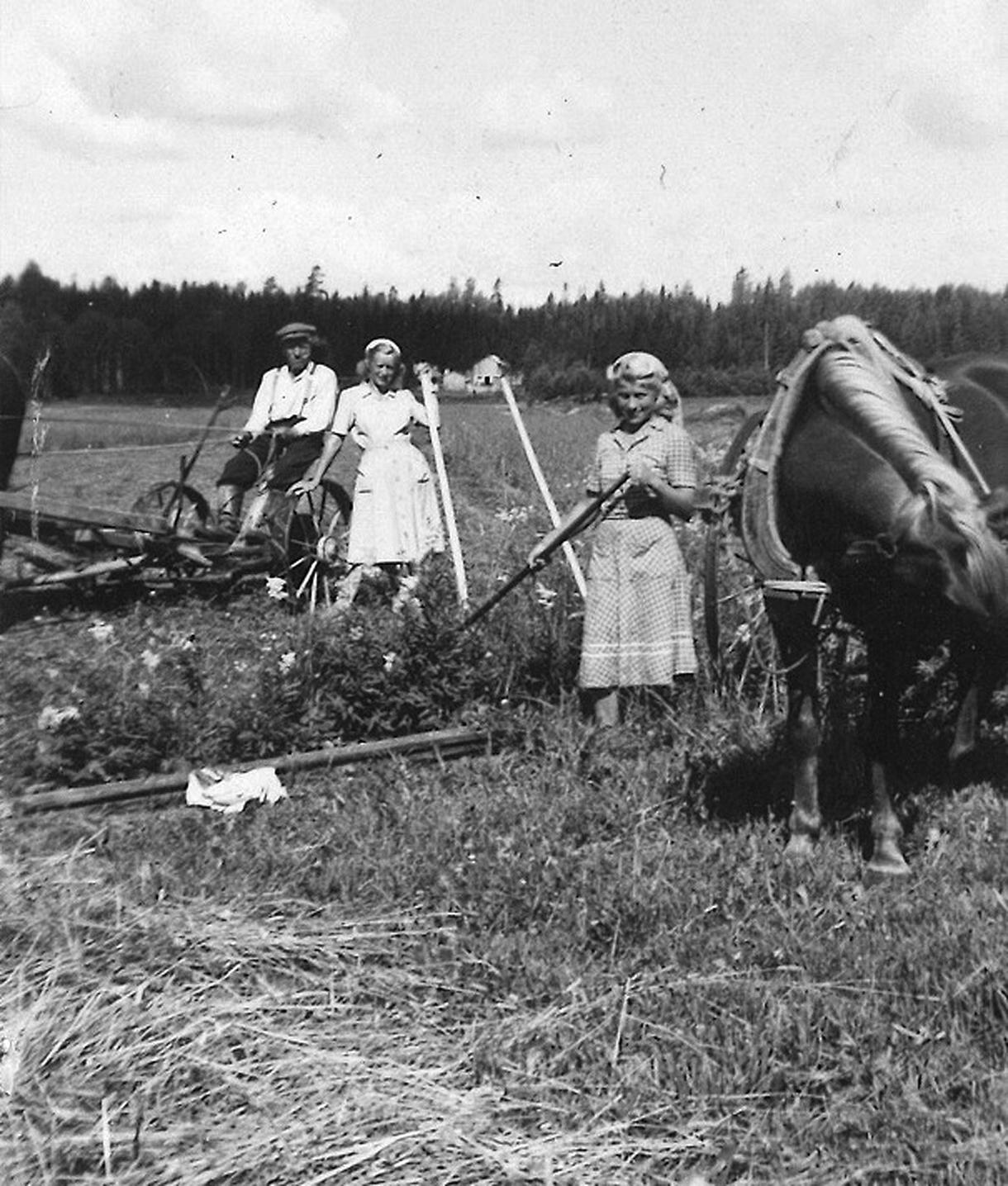 Peltotöissä Rastilan pelloilla 1940-luvun lopulla etualalla Seija Mäkisen äiti Bertta Tikka, enon vaimo Tyyne Tikka sekä isoisä Salomon Tikka ja hänen hevosensa. Kuva: Seija Mäkisen kotialbumi