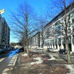 Bertha Pauligin kadun ja Gustav Pauligin kadun suunnitelmat nähtävillä