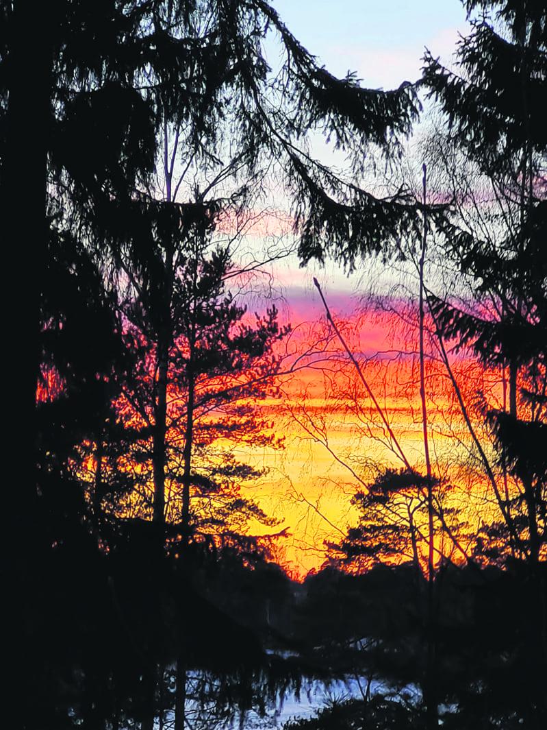 Ramsinniemi, hetki ennen auringonlaskua. Kuva: Kiiki Satosalmi