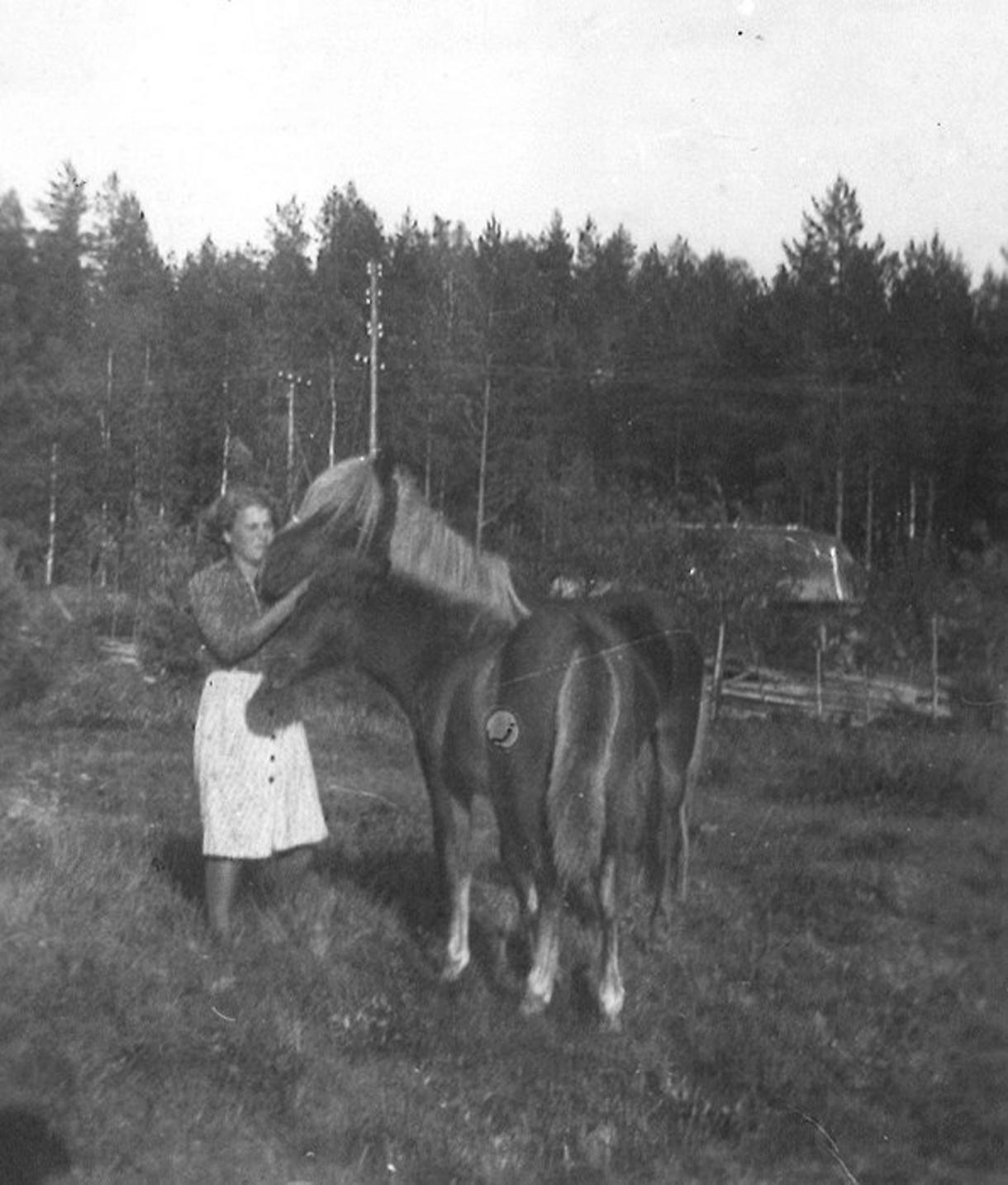 Bertta Tikka kahden hevosen kanssa Rastilassa 1940-luvun lopulla.