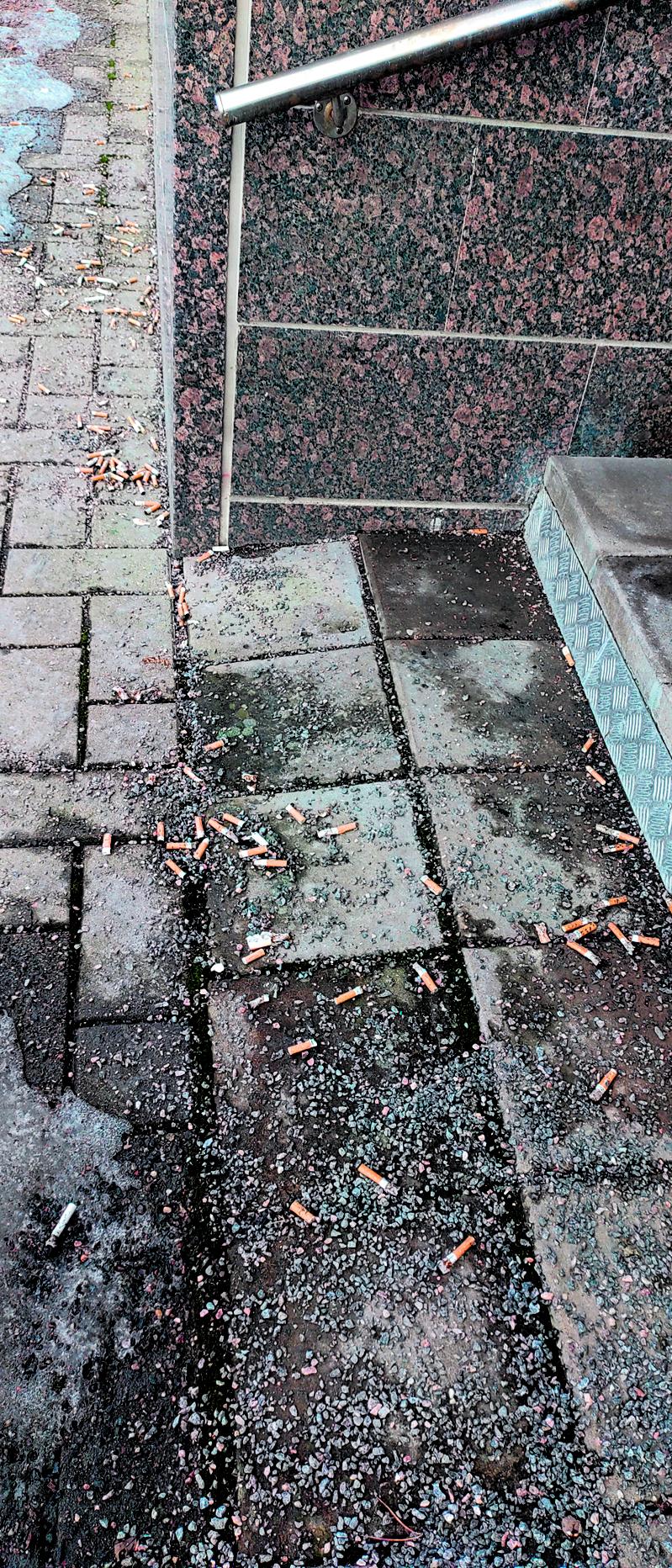 Vuosaaressa on monessa paikkaa törkyä ja koirien jätöksiä ympäriinsä. Esimerkkinä tämä kuva Aurinkolahdesta erään rapun edestä. Ei varmaan olisi paha rasti viedä jämiä roskiin, kun on kaupasta askinkin jaksanut kotiin kantaa.             Terveisin, Veke