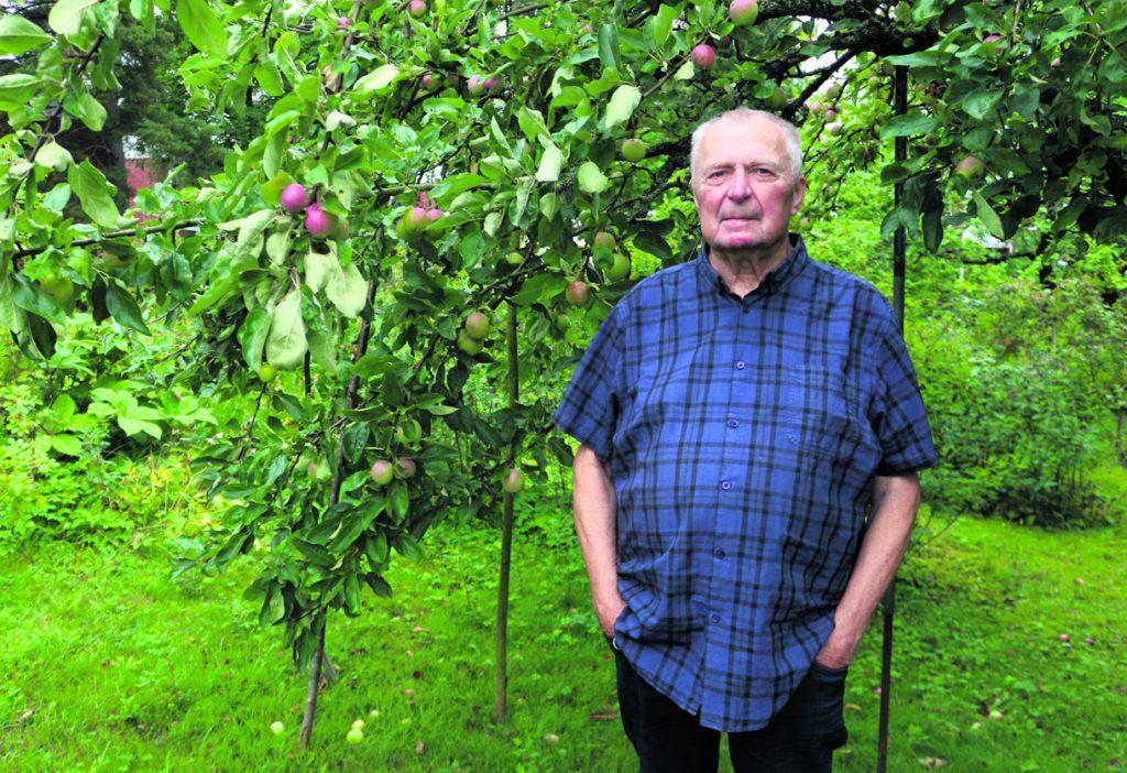 Kalevi Lindén omenapuunsa edessä.