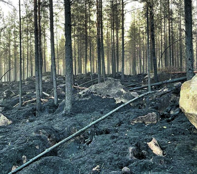 Vuosaaren VPK:sta oli myös henkilöstöä mukana sammuttamassa Kalajoen metsäpaloa.
