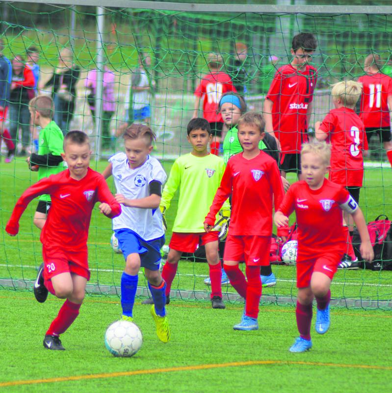 Kartanon kentillä pelattiin viime viikonloppuna Viikkareiden perinteinen Syysfestivaalit-junioriturnaus, johon osallistui peräti 124 poika-, tyttö- ja sekajoukkuetta eri ikäluokista. Kuvassa vauhdissa P2013-kilpasarjan FC Viikingit/punainen 1 sekä LoPa/Valkoinen.