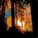 Sauna paloi Uutelassa