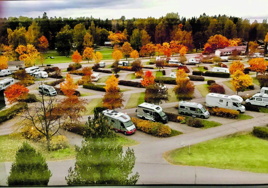 Leirintäalueen ruskaa. Kuva: Merja Liewendahl