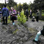 Vuosaaren metsät jälleen kaavoituksen uhkaamina